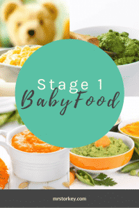 baby food stage 1